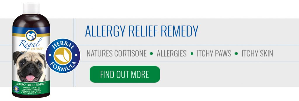 Allergy Relief Remedy