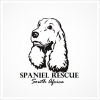 regal-rescue-spaniel-rescue