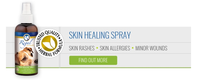 Regal Skin Healing Spray