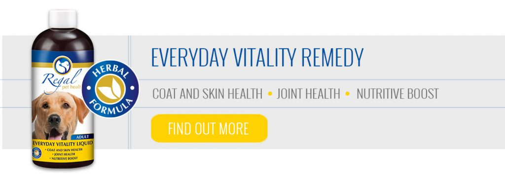Everyday Vitality Remedy