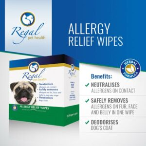 Spring Allergies And Your Pet Regal Pet Health Pet