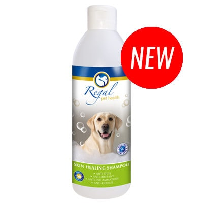 Pack shot of Regal Skin healing shampoo 500ml