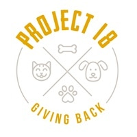 Project 18