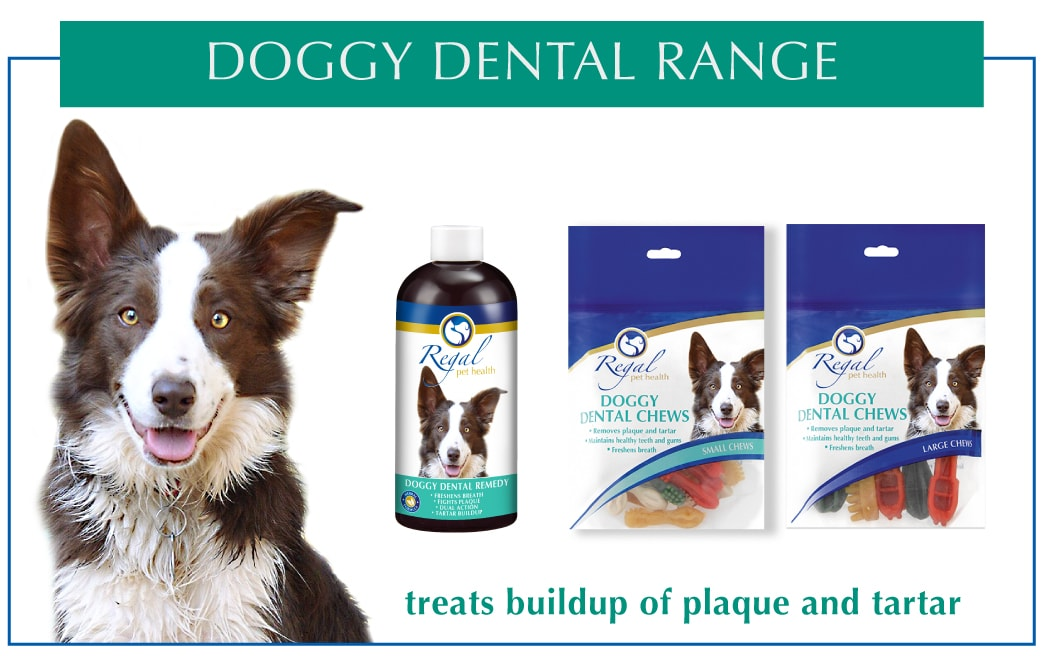 Regal_Doggy Dental_Range_Products_2019